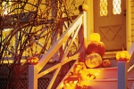 Halloween evidenza