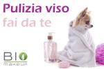 Pulizia_del_viso_fai_da_te