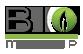 Bio Makeup
