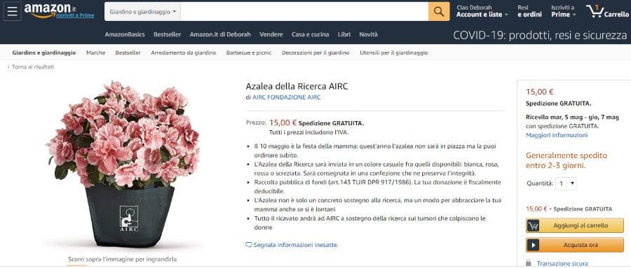azalea airc come acquistare